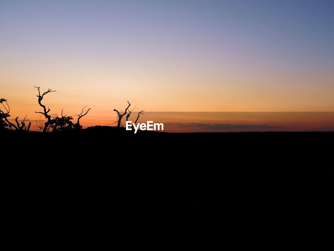 sunset, nature, silhouette, tranquil scene, beauty in nature, scenics, tranquility, landscape, copy space, sky, outdoors, no people, clear sky, tree, plant, day