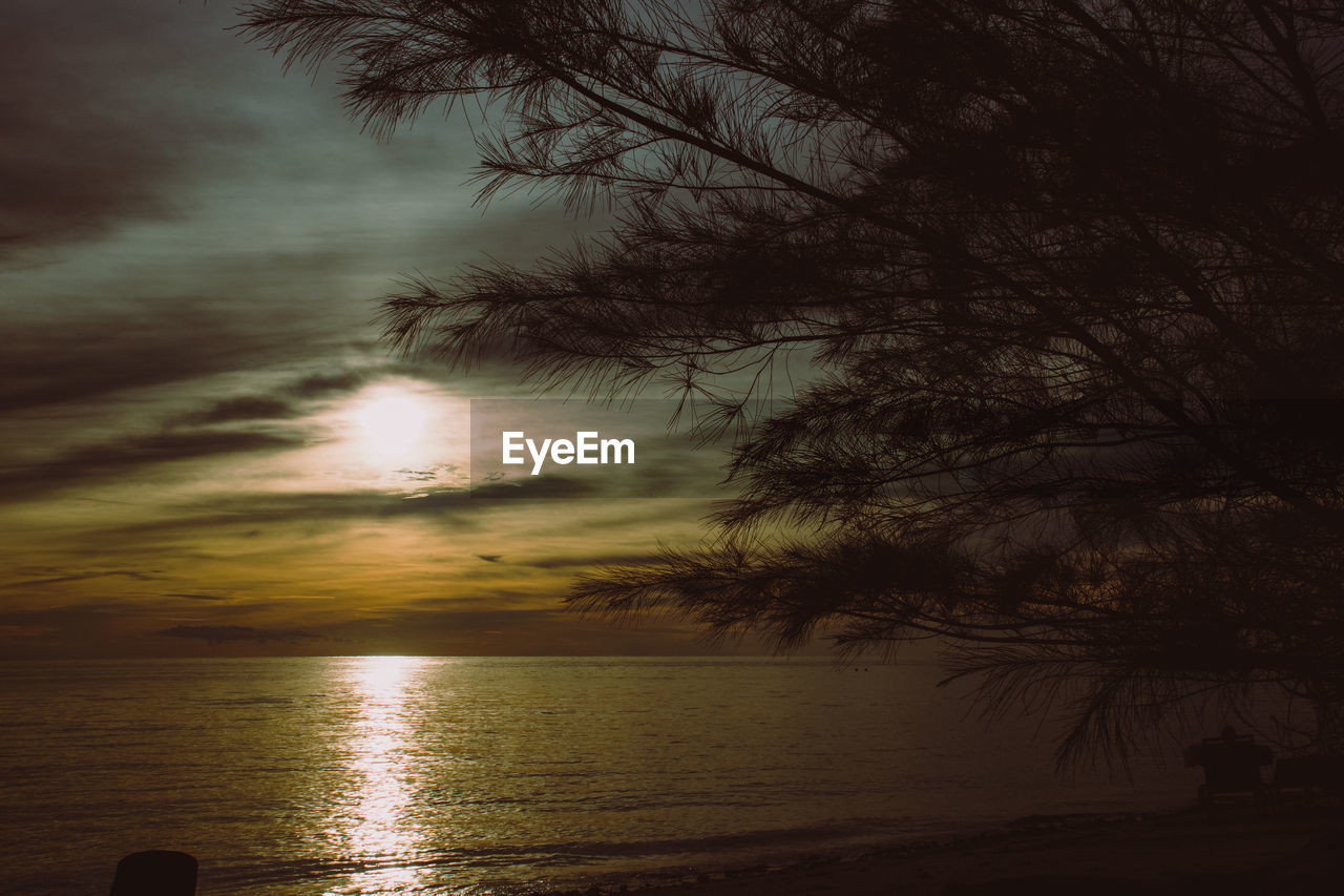 water, sky, beauty in nature, tree, tranquility, tranquil scene, scenics - nature, sea, nature, sunset, cloud - sky, plant, reflection, no people, beach, sun, outdoors, idyllic, land, horizon over water