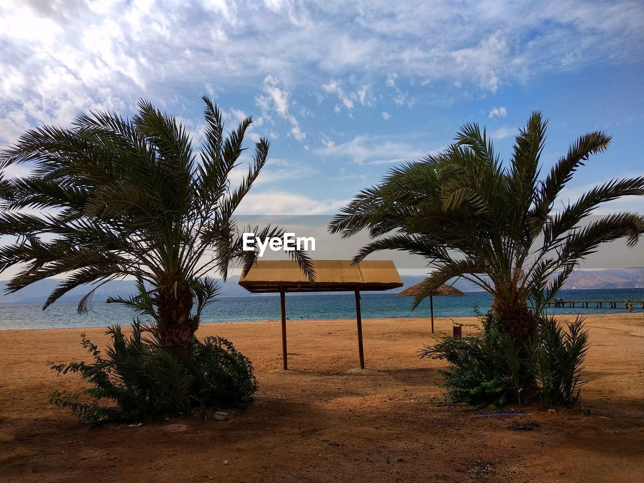 tree, plant, palm tree, tropical climate, sky, water, beach, land, growth, nature, beauty in nature, cloud - sky, sea, scenics - nature, tranquil scene, tranquility, no people, architecture, day, outdoors, horizon over water