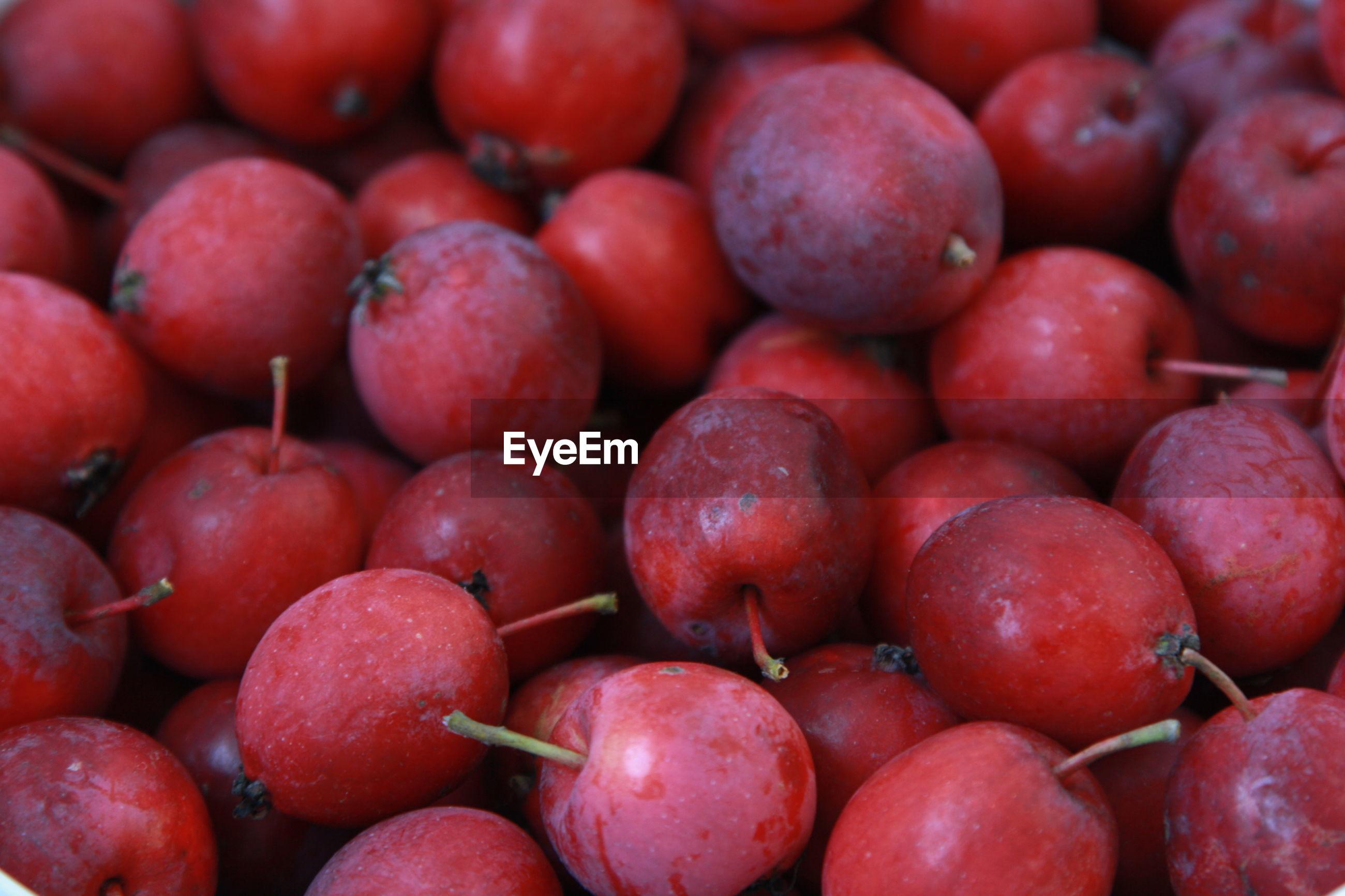 FULL FRAME SHOT OF FRESH FRUITS FOR SALE