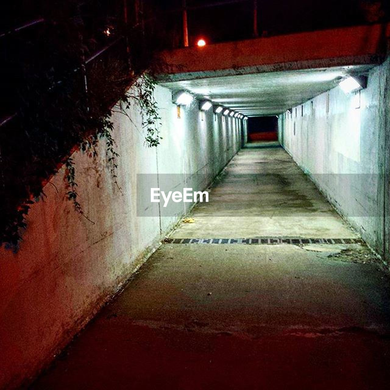 the way forward, illuminated, empty, built structure, architecture, no people, tunnel, indoors, day