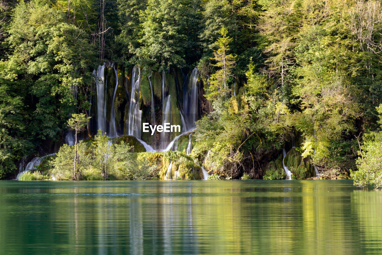 Scenic view of lake against waterfalls in forest