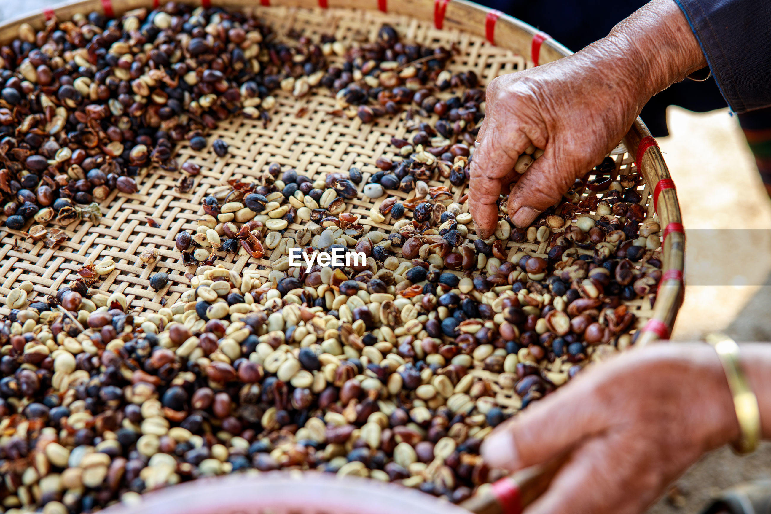 Process of sorting dried coffee beans by hand farmers