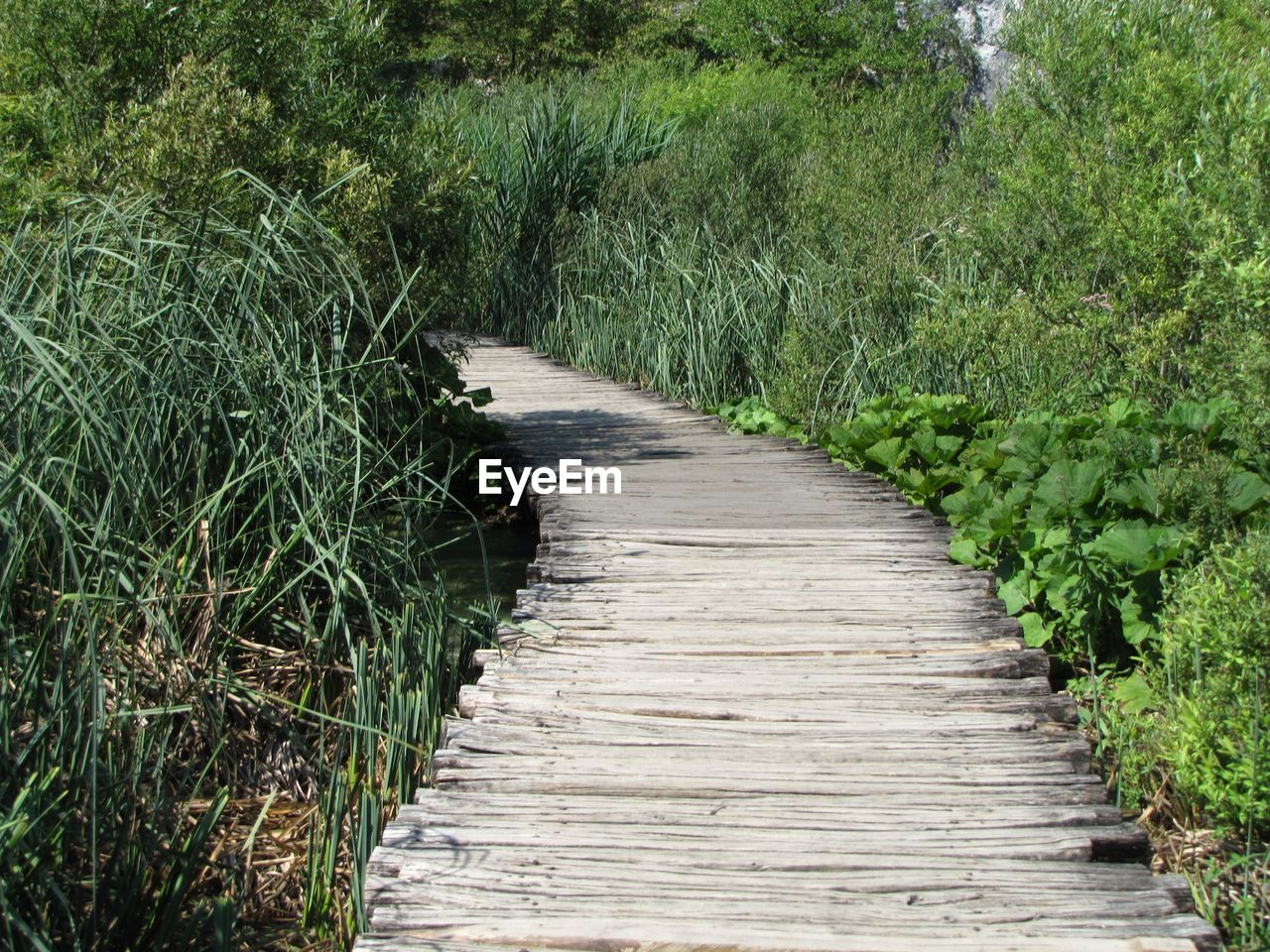 Boardwalk Amidst Plants On Field At Plitvice Lakes National Park