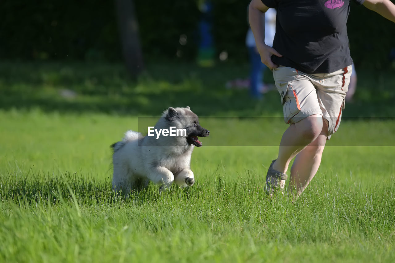 LOW SECTION OF MAN WITH DOG ON THE FIELD