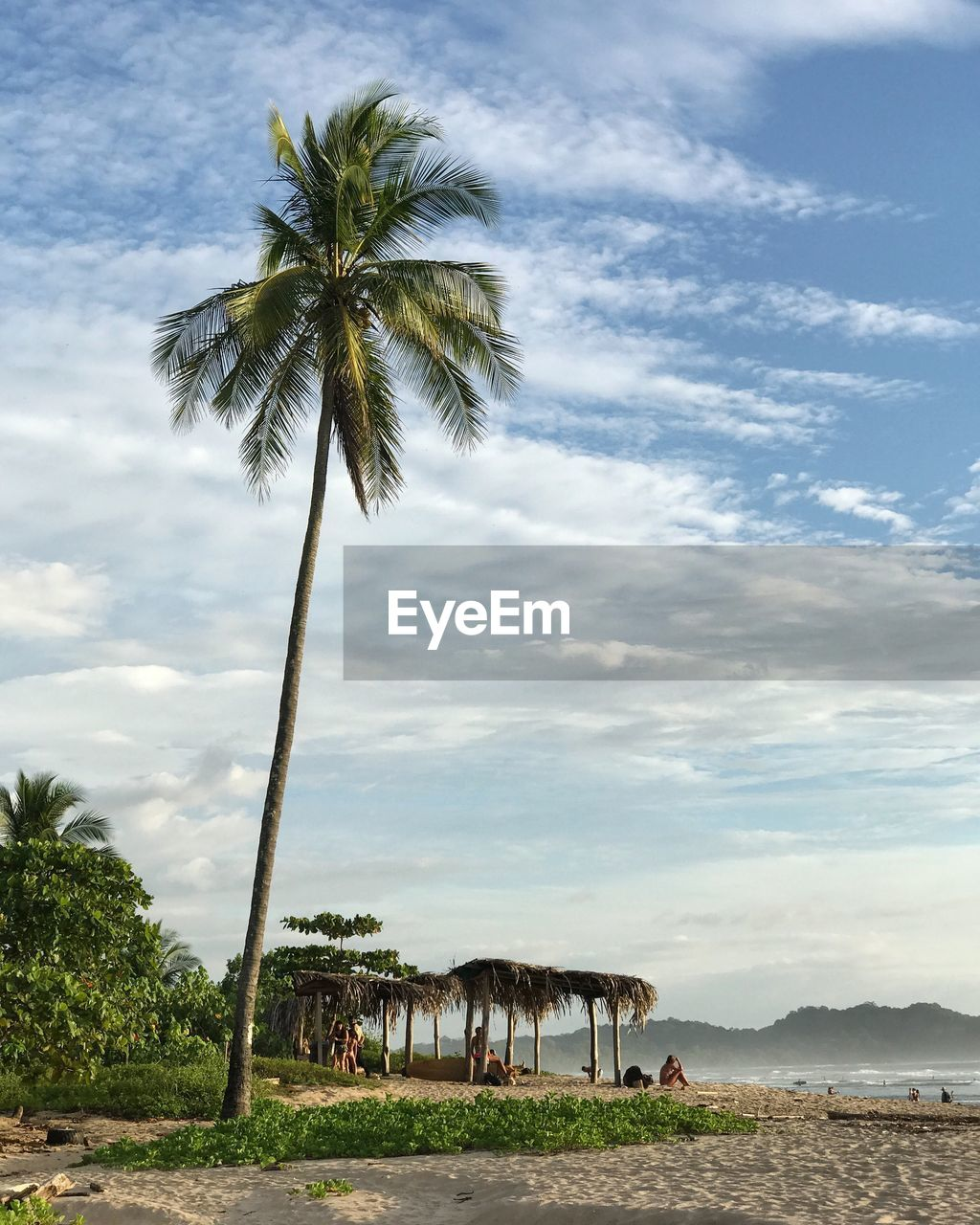 tropical climate, palm tree, cloud - sky, sky, plant, tree, beauty in nature, land, beach, nature, scenics - nature, growth, coconut palm tree, tranquil scene, day, tranquility, water, outdoors, no people, tropical tree