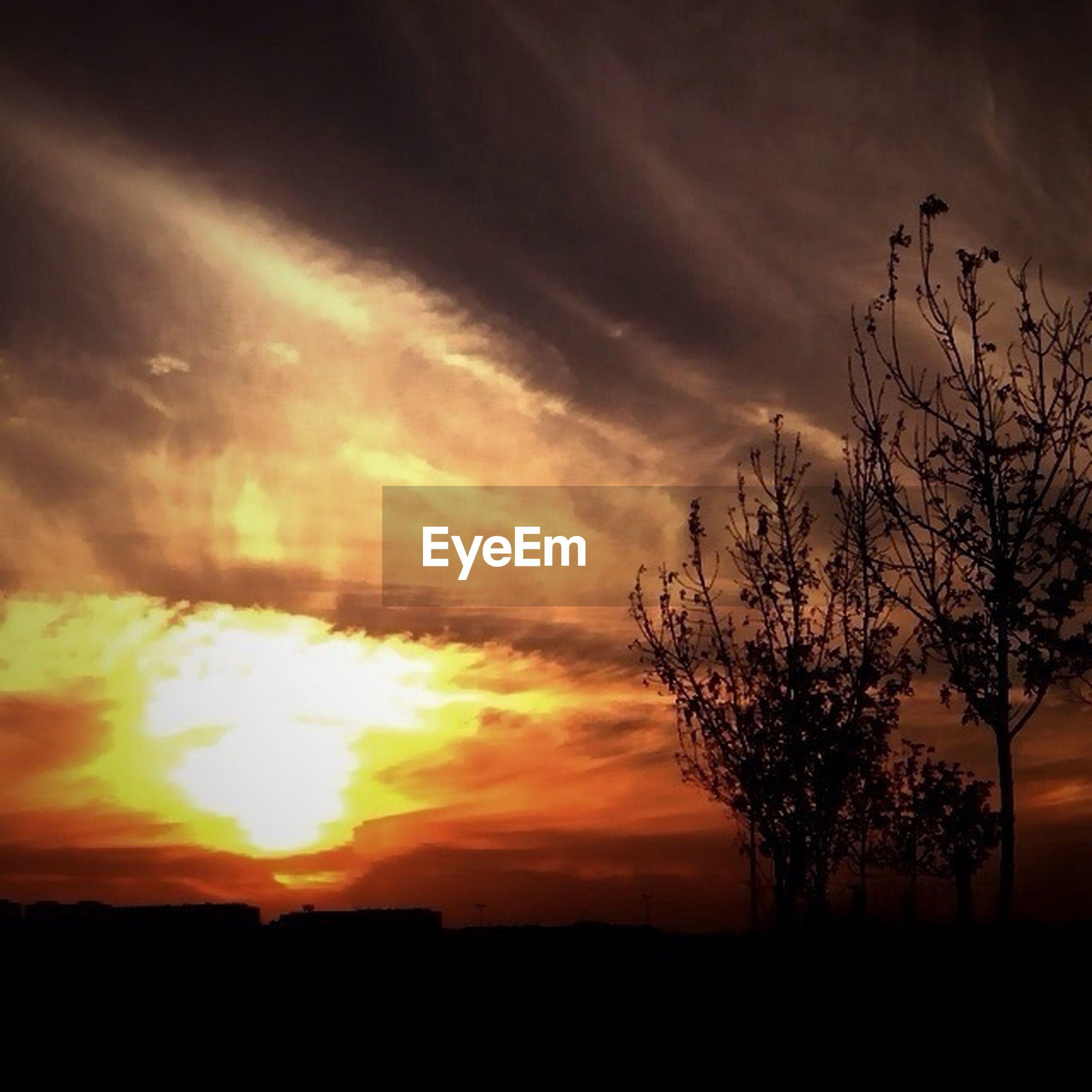 sunset, silhouette, scenics, sky, tranquil scene, tranquility, beauty in nature, orange color, tree, nature, landscape, cloud - sky, idyllic, dramatic sky, cloud, dark, sun, outdoors, moody sky, no people