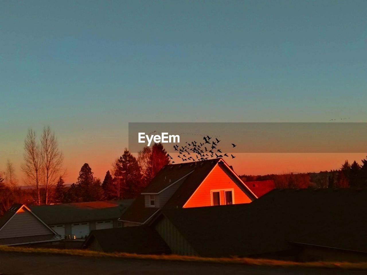sky, architecture, sunset, built structure, building exterior, tree, house, building, copy space, no people, orange color, nature, plant, beauty in nature, scenics - nature, residential district, silhouette, landscape, outdoors, clear sky, cottage