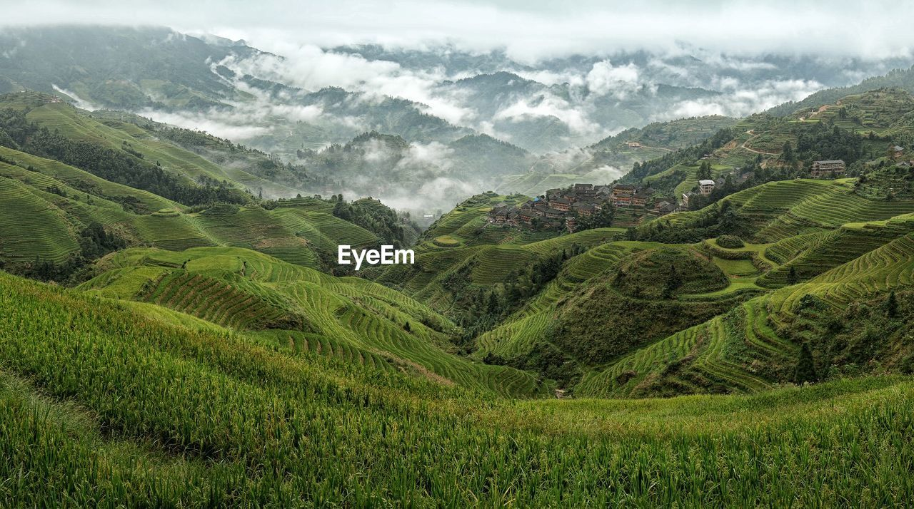 High Angle View Of Rice Terraces