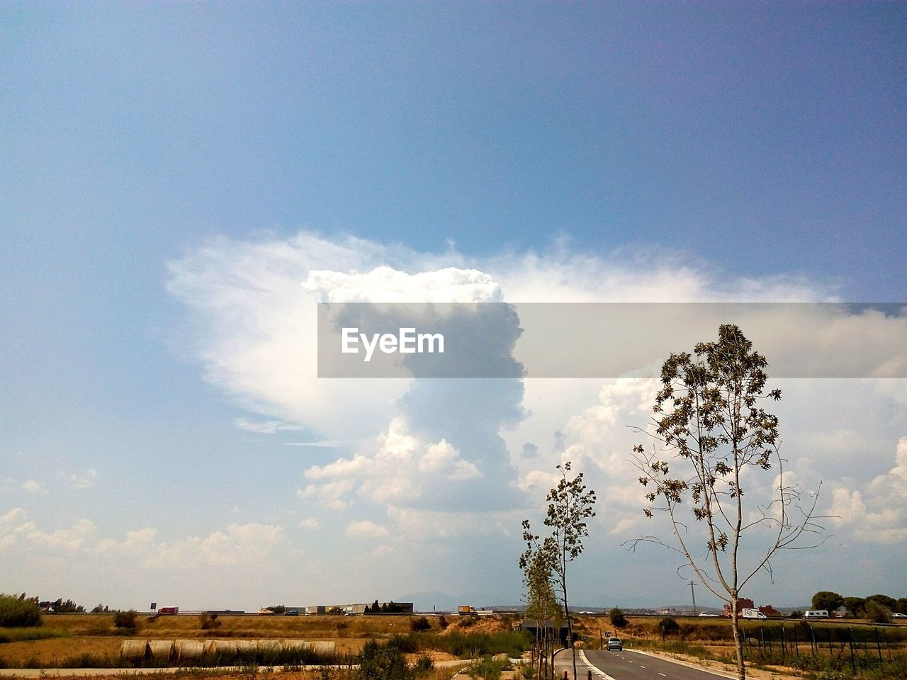 sky, cloud - sky, beauty in nature, tranquil scene, plant, tranquility, environment, no people, scenics - nature, day, landscape, nature, tree, land, outdoors, field, non-urban scene, growth, sunlight, horizon over land, pollution