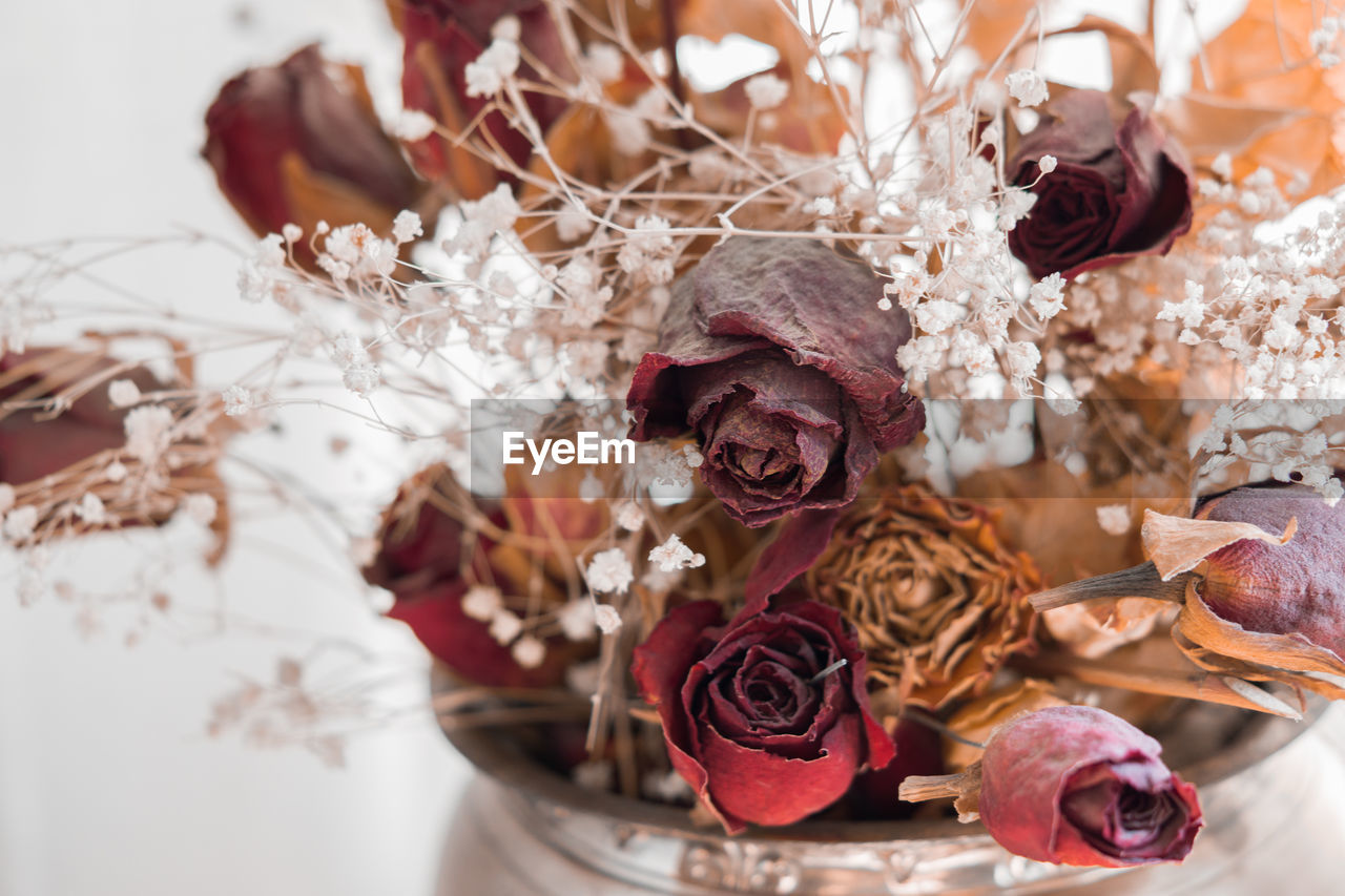 flower, rose - flower, no people, bouquet, celebration, close-up, nature, indoors, fragility, flower head, day