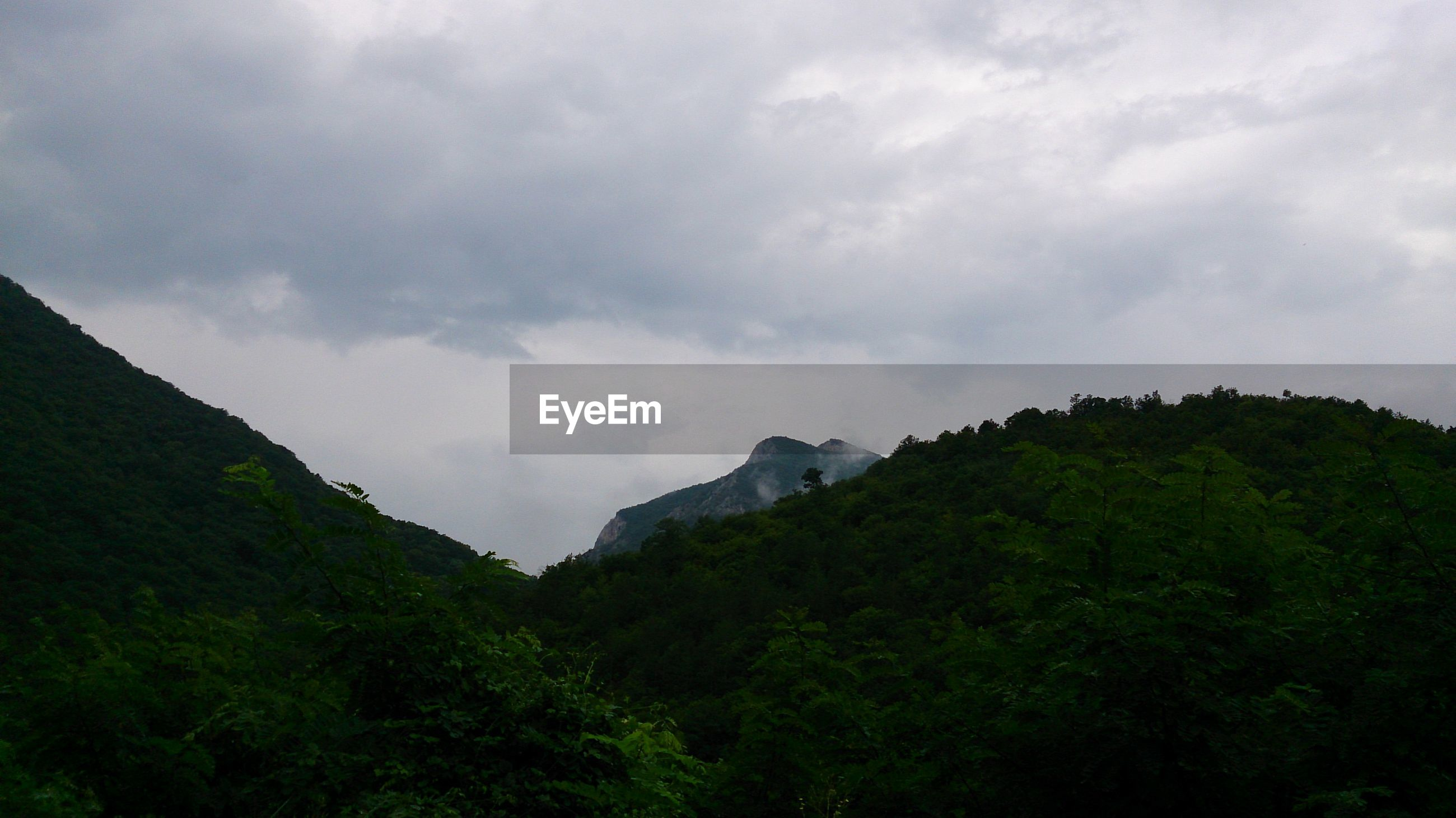 mountain, sky, tranquil scene, tranquility, scenics, tree, beauty in nature, nature, cloud - sky, low angle view, growth, green color, landscape, non-urban scene, cloudy, mountain range, idyllic, cloud, day, outdoors