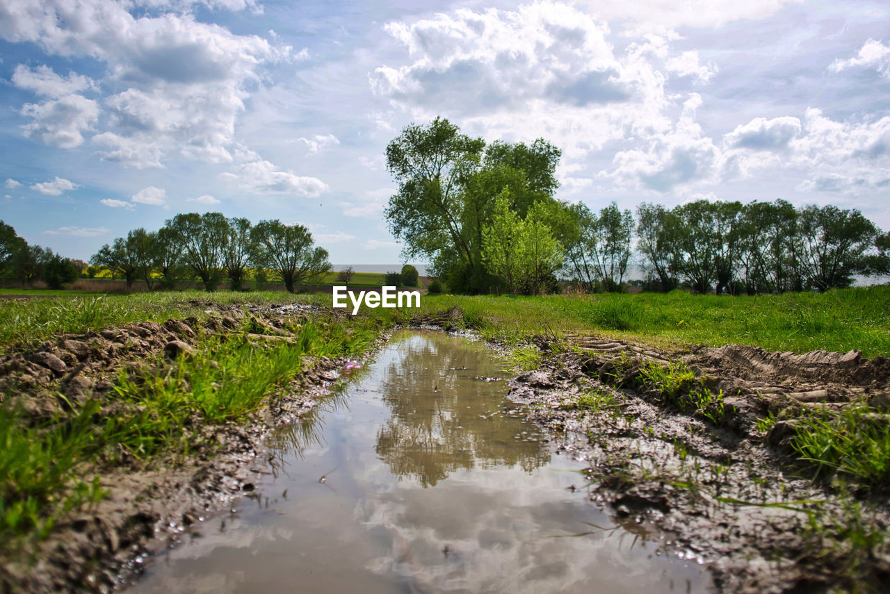 Scenic View Of Stream Amidst Trees On Field Against Sky