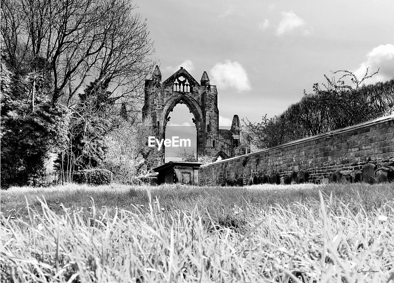 architecture, plant, built structure, tree, grass, arch, nature, sky, day, building exterior, no people, bridge, field, the past, cloud - sky, history, land, bridge - man made structure, connection, bare tree, outdoors, arch bridge