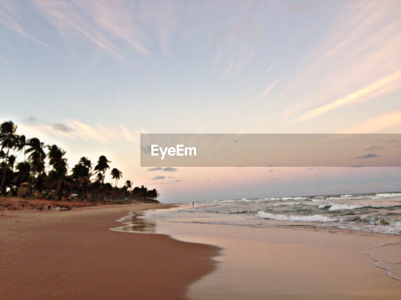 sea, beach, sunset, sky, nature, scenics, beauty in nature, sand, tranquility, tranquil scene, water, no people, outdoors, horizon over water, tree, day