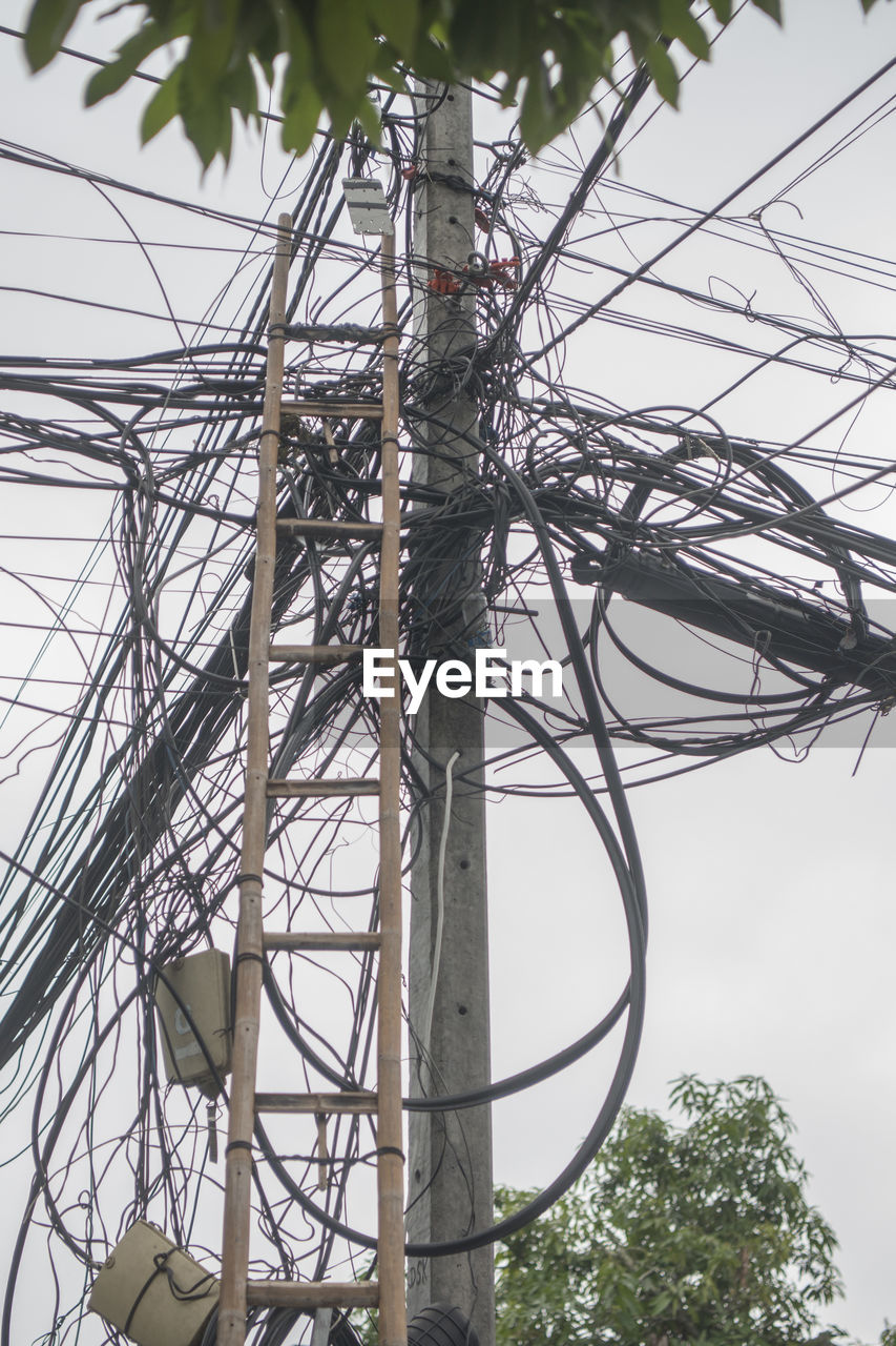 cable, electricity, connection, power supply, low angle view, complexity, power line, technology, day, tangled, tree, no people, fuel and power generation, outdoors, branch, telephone line, sky, close-up, nature