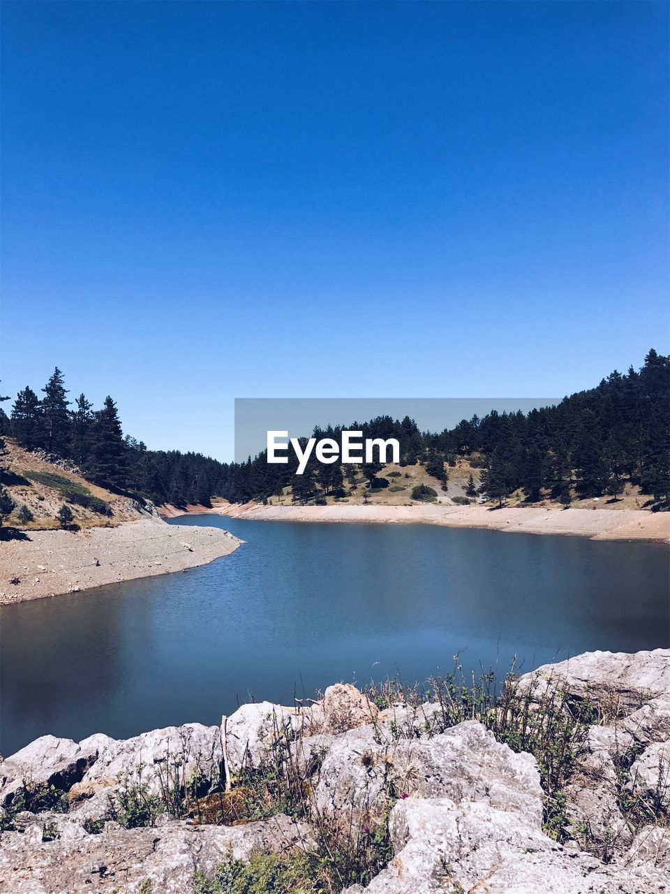 water, nature, clear sky, copy space, tranquil scene, tranquility, beauty in nature, river, no people, scenics, outdoors, tree, blue, day, landscape, sky