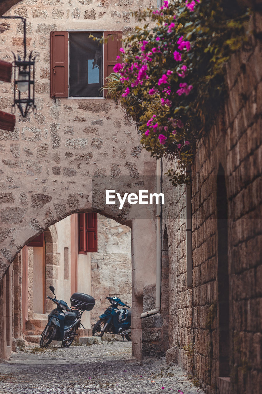architecture, built structure, building exterior, plant, building, flowering plant, flower, day, nature, entrance, window, wall, people, real people, wall - building feature, house, residential district, door, transportation, outdoors, brick, alley, stone wall