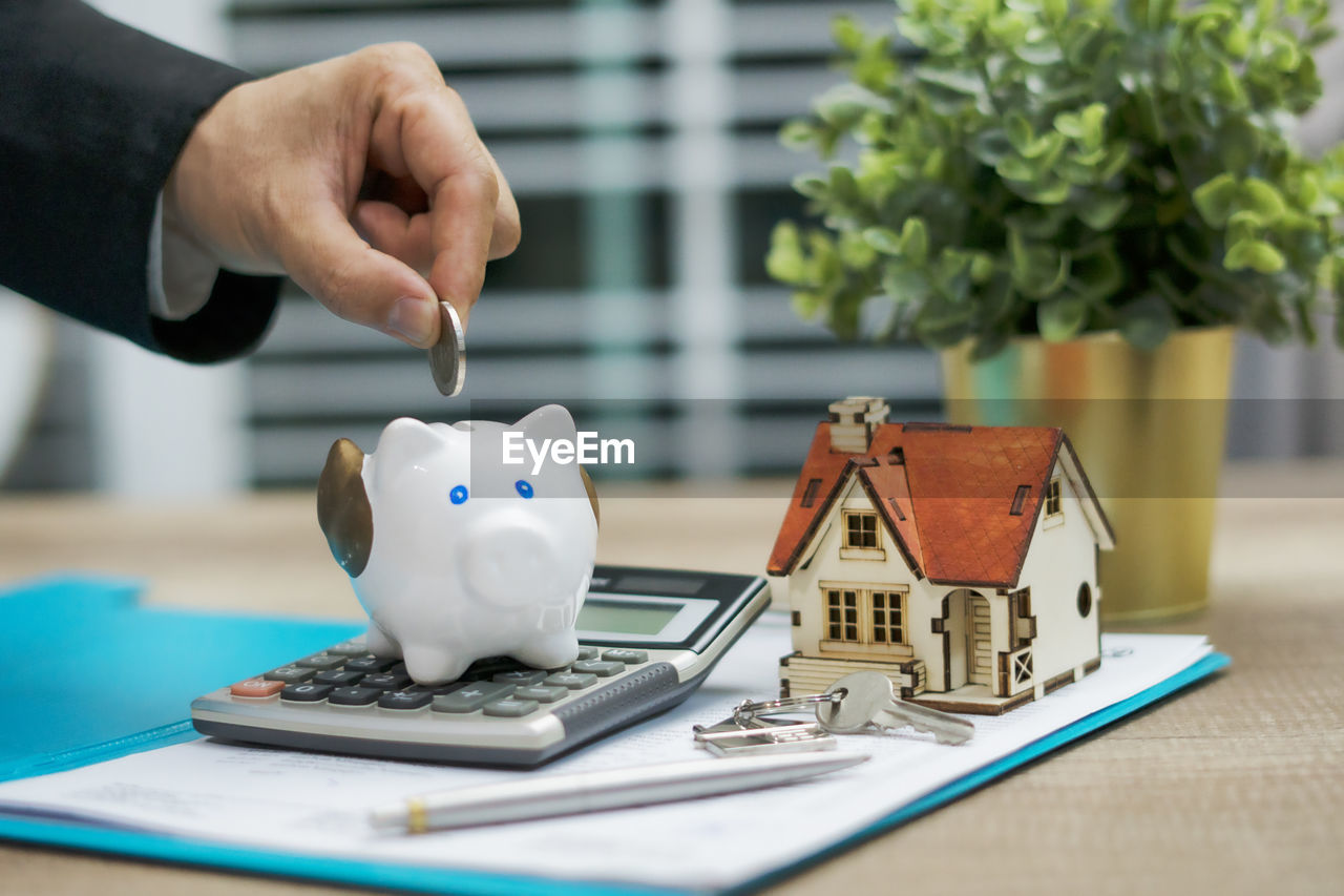 finance, currency, savings, table, investment, human hand, hand, business, piggy bank, human body part, one person, representation, real people, indoors, men, coin, wealth, close-up, holding, coin bank, finger, economy