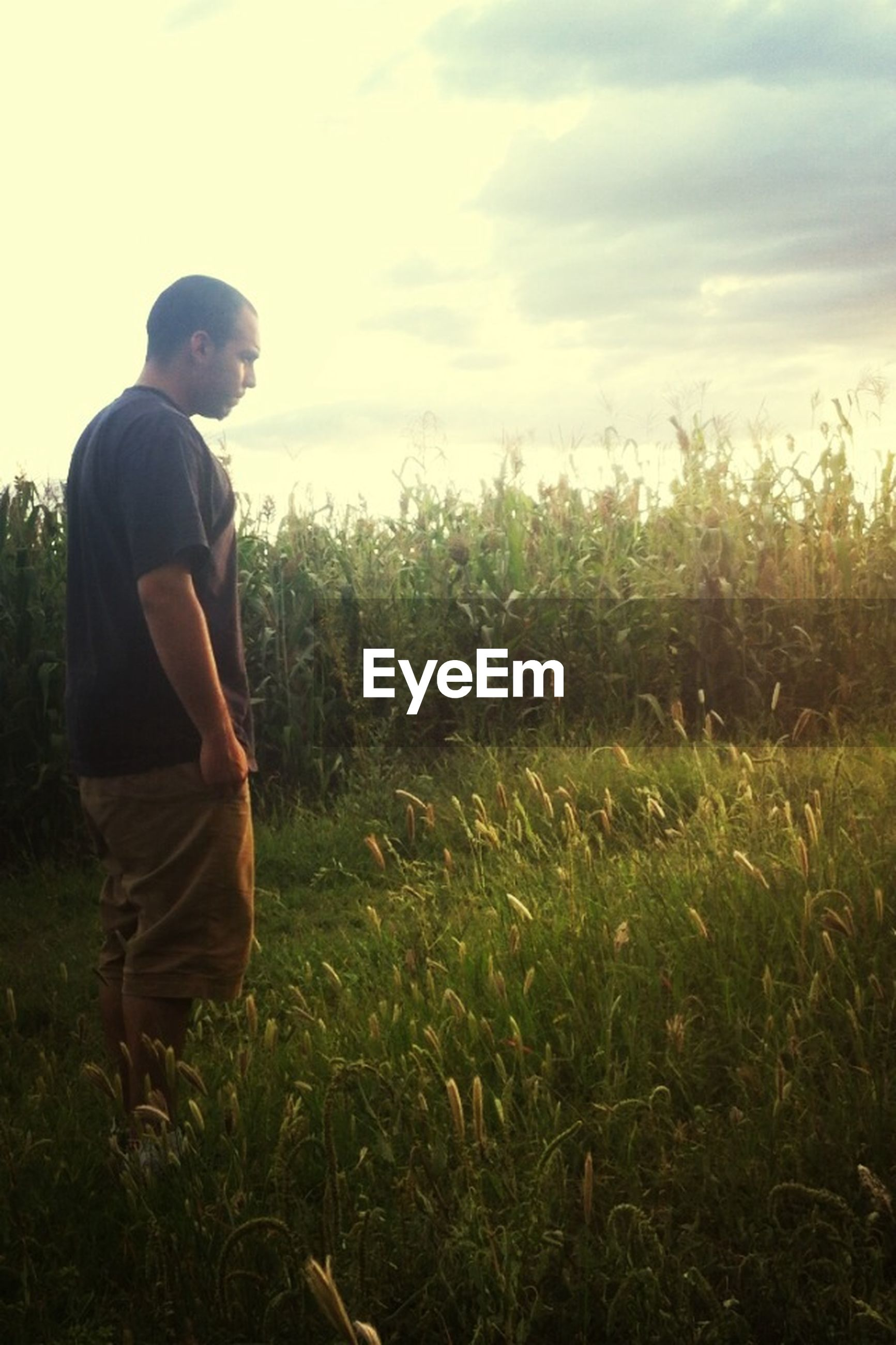 lifestyles, leisure activity, casual clothing, field, grass, men, rear view, standing, three quarter length, sky, full length, landscape, photography themes, young men, photographing, young adult, nature, camera - photographic equipment