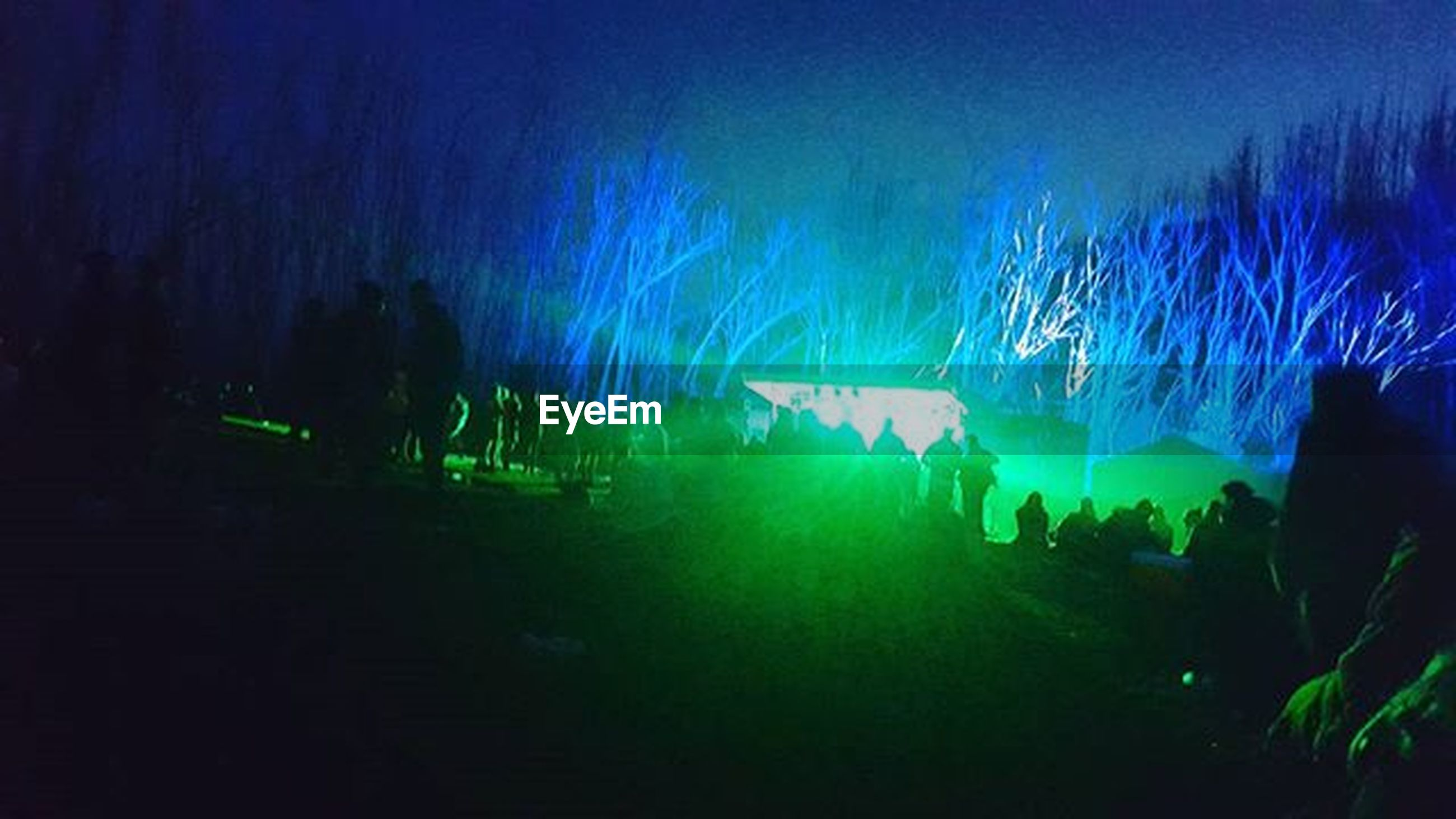 night, illuminated, blue, light - natural phenomenon, arts culture and entertainment, silhouette, men, dark, tree, lifestyles, glowing, outdoors, leisure activity, green color, event, lighting equipment, sparks, sky, large group of people