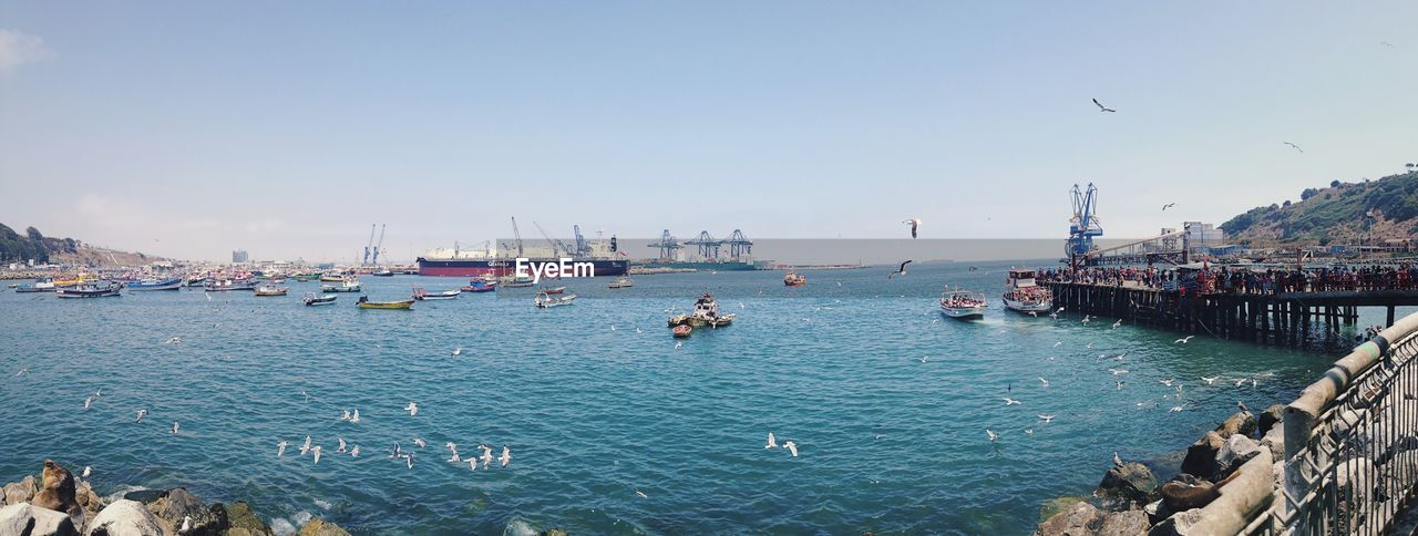 water, nautical vessel, sea, bird, large group of animals, day, outdoors, nature, transportation, mode of transport, harbor, animal themes, large group of people, animals in the wild, built structure, sky, beauty in nature, clear sky, architecture, moored, scenics, flying