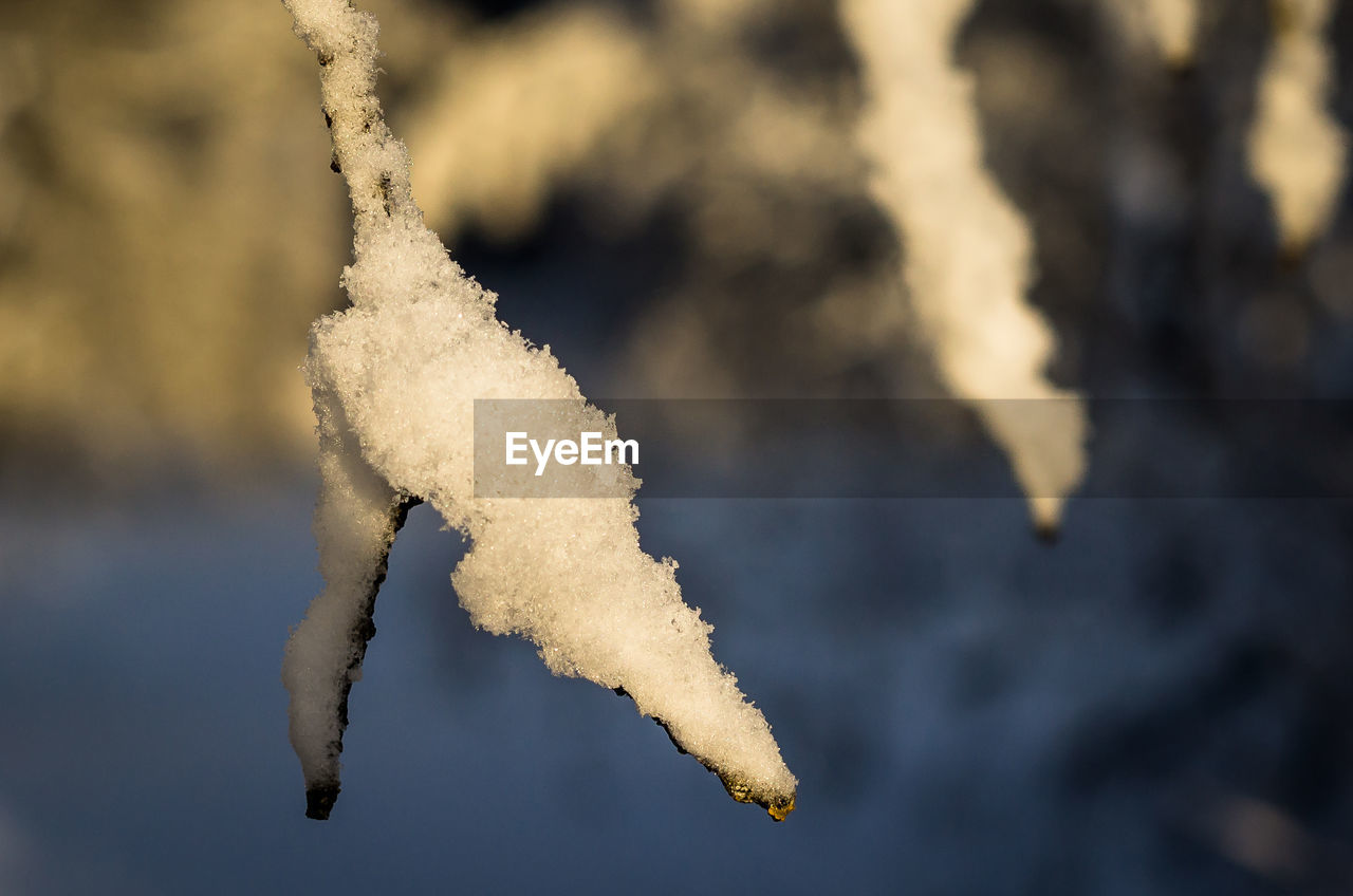 focus on foreground, no people, day, white color, nature, cold temperature, frozen, snow, close-up, winter, food and drink, outdoors, food, selective focus, sky, water, smoke - physical structure, transportation, snack
