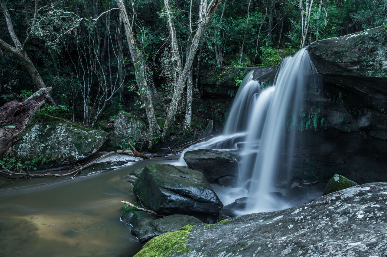forest, long exposure, water, waterfall, motion, scenics - nature, plant, flowing water, beauty in nature, tree, blurred motion, rock, rock - object, solid, land, nature, no people, flowing, non-urban scene, rainforest, stream - flowing water, outdoors, power in nature, falling water