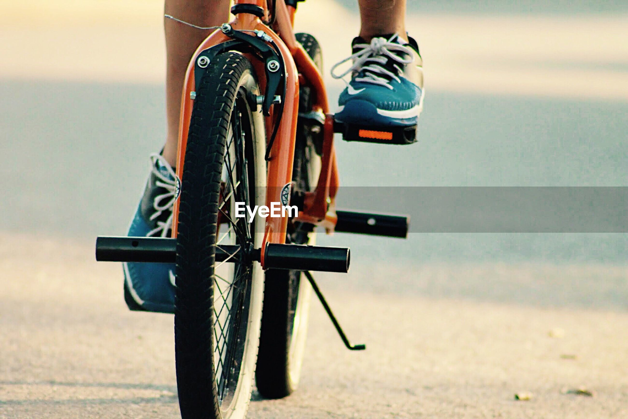 Low section view of person riding bicycle