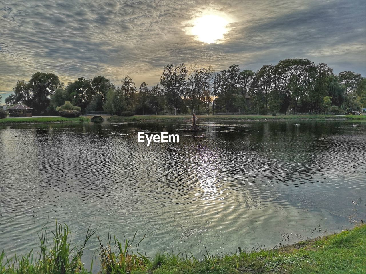 water, sky, plant, beauty in nature, scenics - nature, tree, tranquil scene, cloud - sky, tranquility, lake, no people, reflection, nature, non-urban scene, growth, idyllic, sunset, day, grass, outdoors