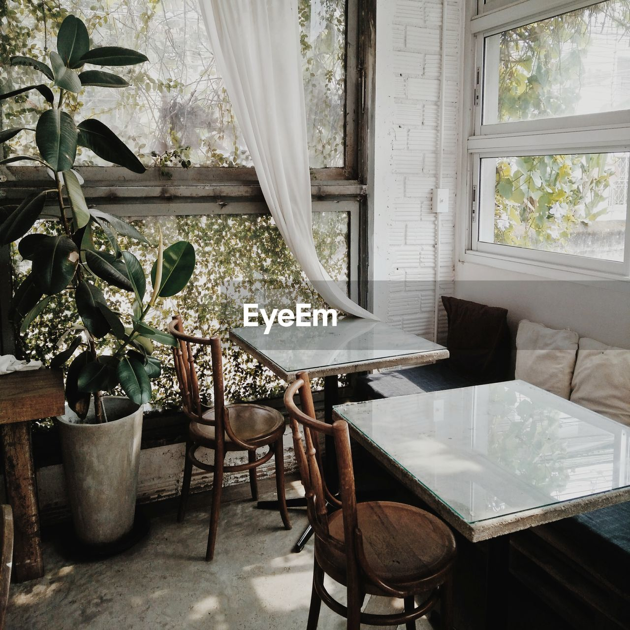 seat, chair, window, table, plant, no people, indoors, absence, home interior, nature, potted plant, day, growth, architecture, empty, furniture, house, curtain, transparent, houseplant, flower pot
