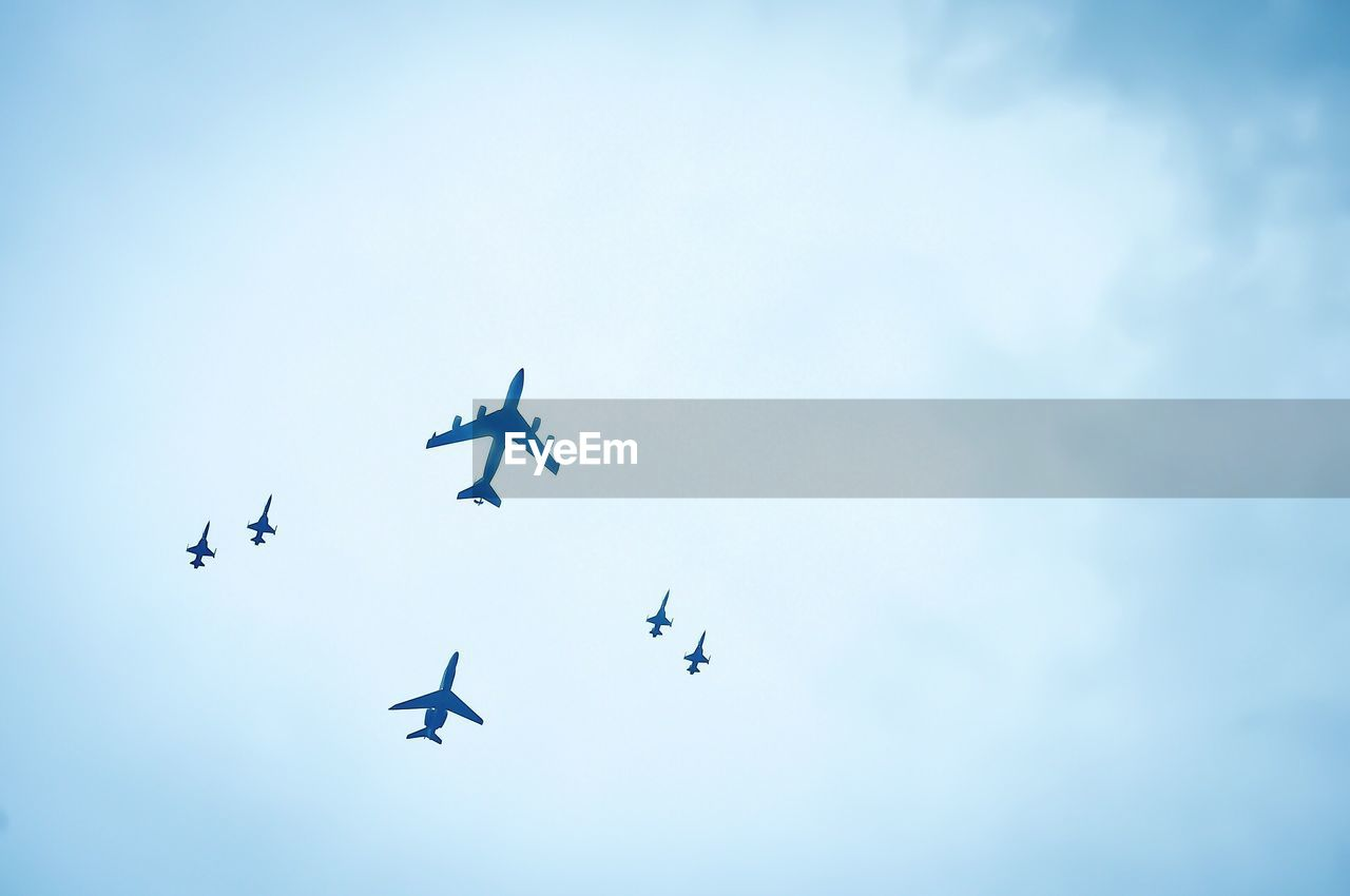 flying, low angle view, sky, no people, mid-air, nature, animal themes, day, outdoors, airshow, clear sky, airplane, fighter plane, bird