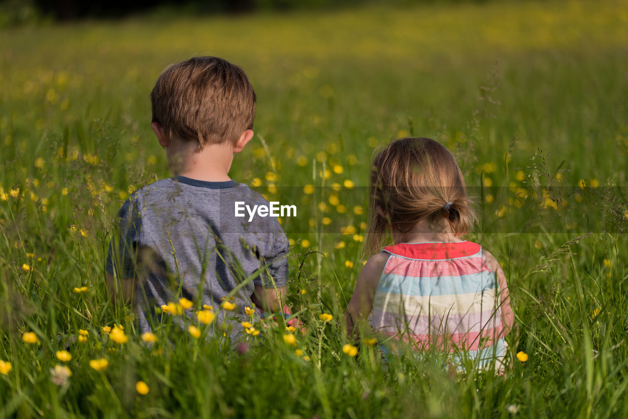 Rear view of girl and boy in grass