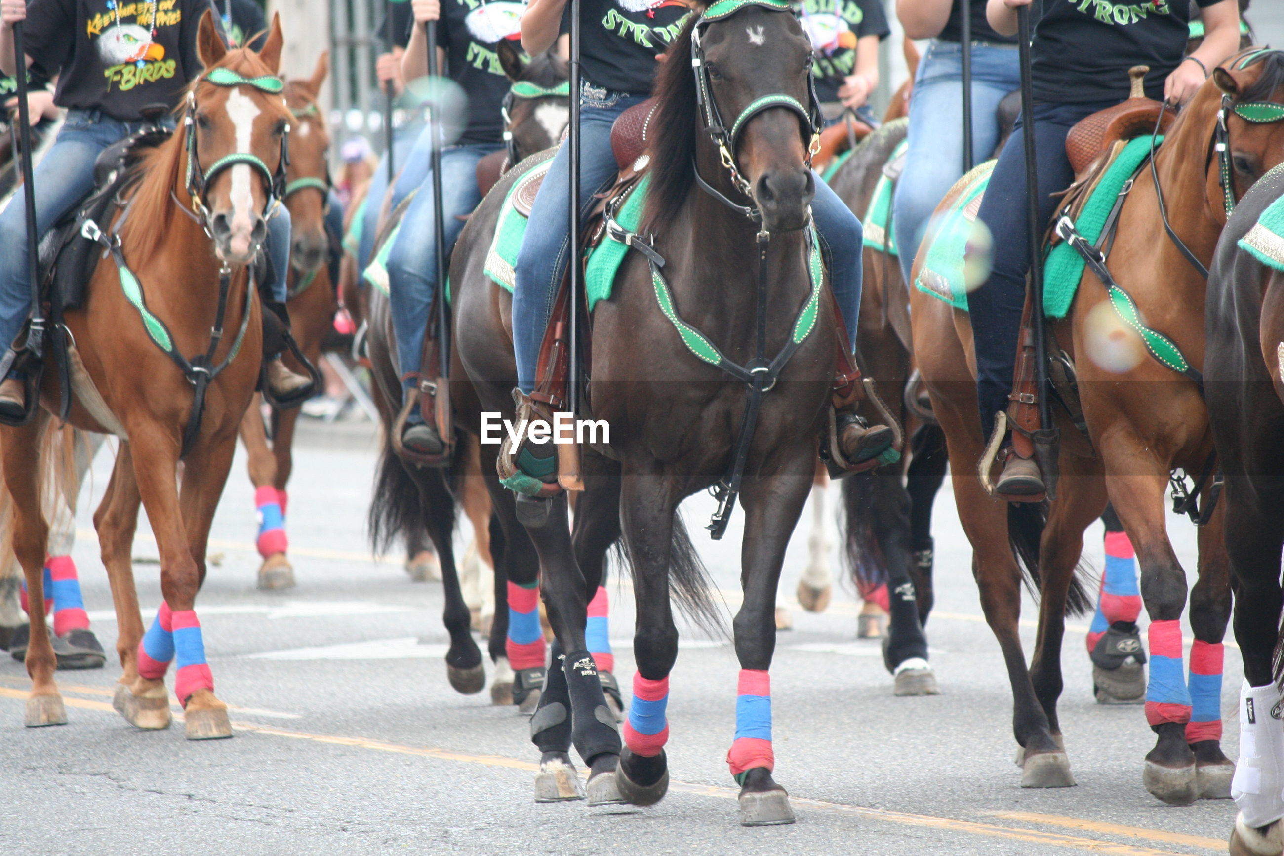 Low section of people riding horses during fourth of july parade