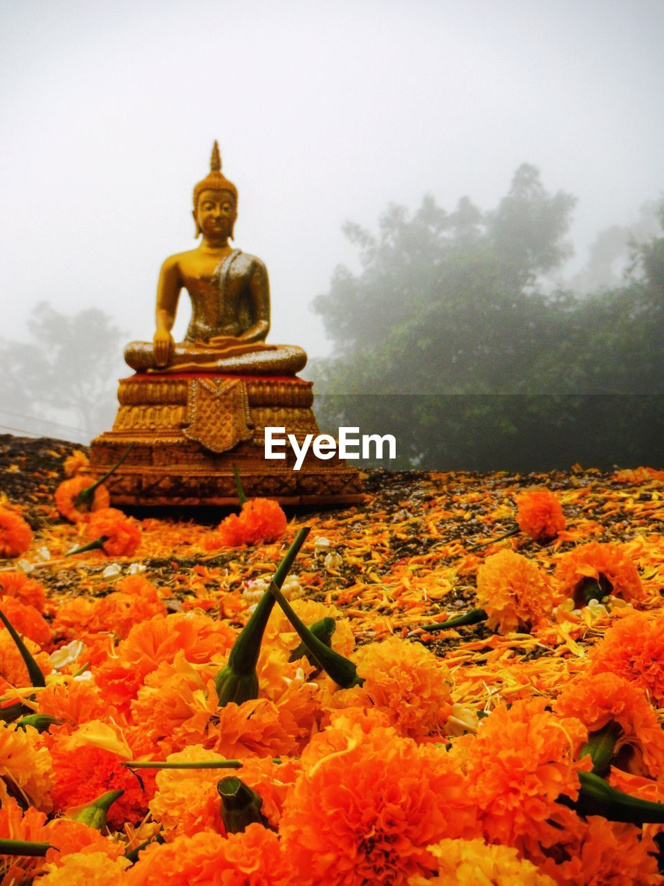View Of Temple In Foggy Weather