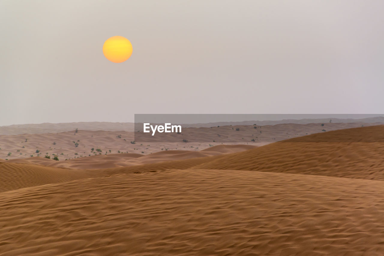 land, sand, scenics - nature, desert, sky, tranquility, tranquil scene, beauty in nature, landscape, climate, arid climate, non-urban scene, environment, sand dune, nature, no people, horizon, clear sky, horizon over land, remote, outdoors, atmospheric
