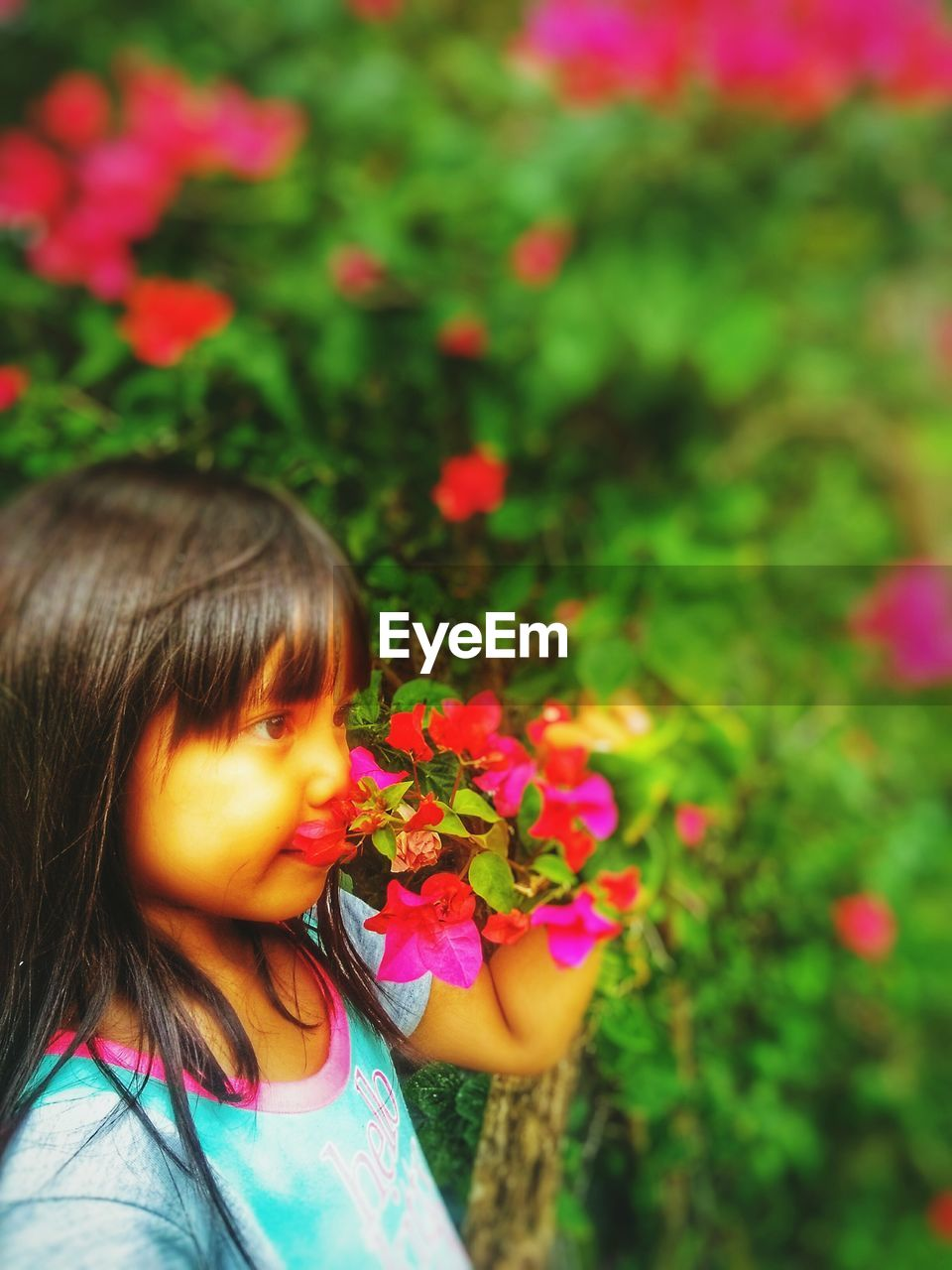 child, flowering plant, childhood, flower, girls, plant, one person, females, women, real people, nature, beauty in nature, leisure activity, innocence, lifestyles, cute, freshness, pink color, focus on foreground, outdoors, flower head