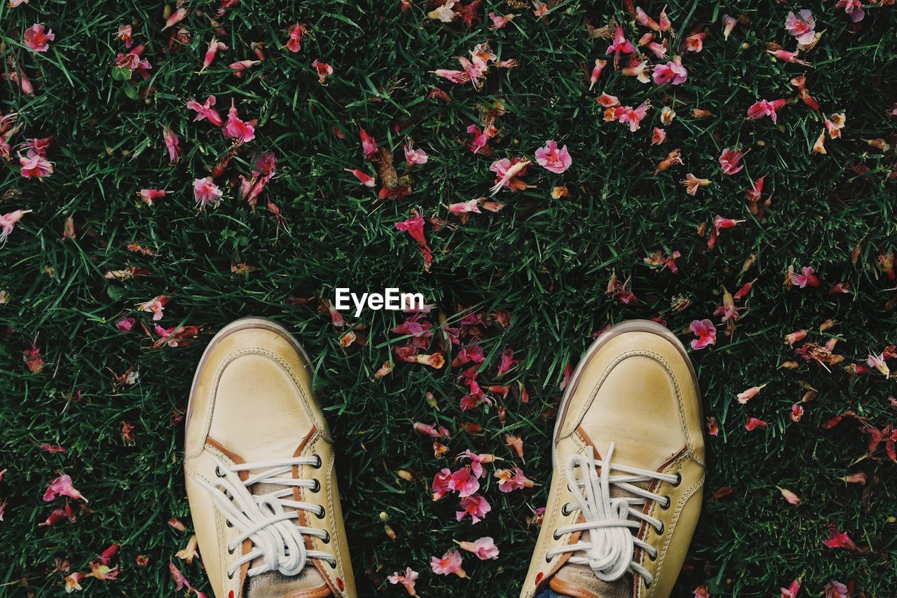 Directly above shot of shoes on grassy field with pink flowers