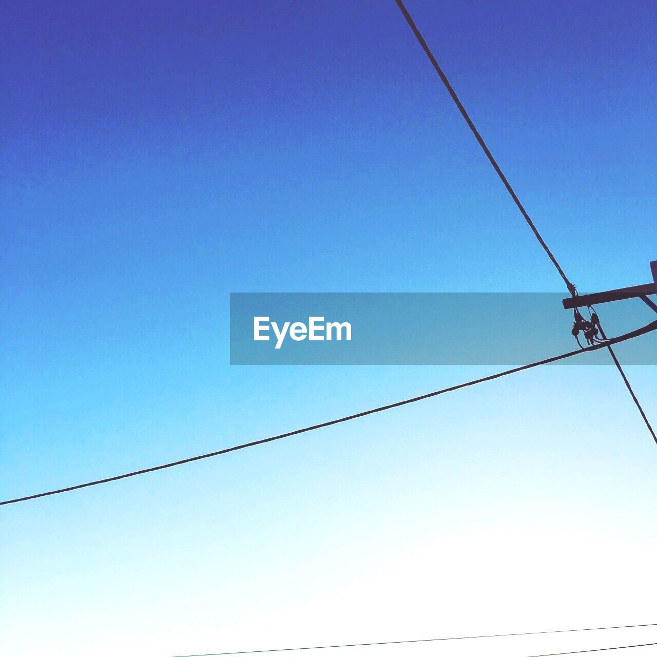 cable, power line, power supply, connection, low angle view, electricity, blue, clear sky, copy space, no people, outdoors, telephone line, technology, day, nature, fuel and power generation, electricity pylon, overhead cable car, sky, perching