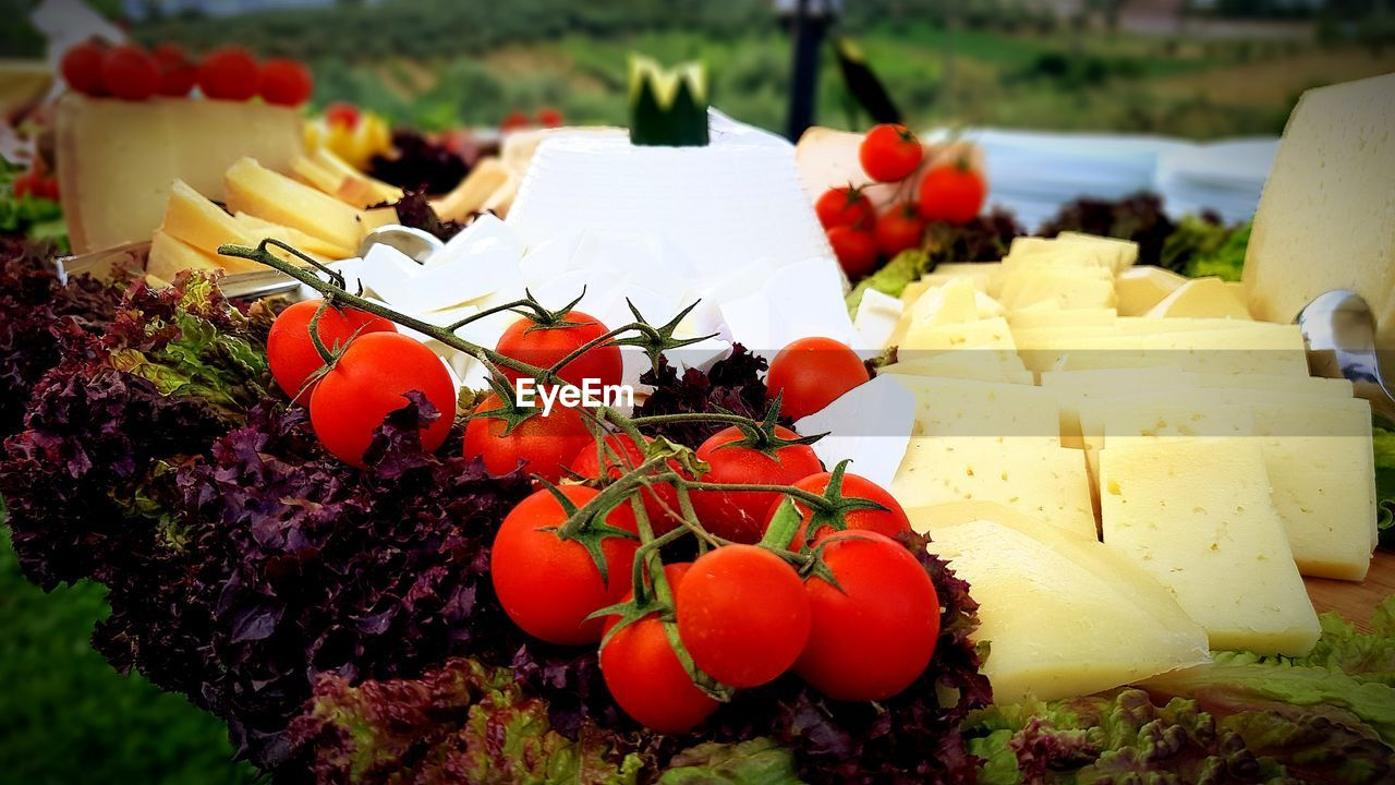 food and drink, food, healthy eating, fruit, freshness, wellbeing, no people, still life, focus on foreground, vegetable, close-up, plant, tomato, red, day, nature, grape, dairy product, cheese, ripe