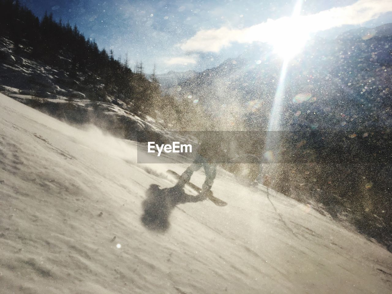 nature, snow, sport, motion, sunlight, winter, day, cold temperature, tree, mountain, winter sport, skiing, leisure activity, beauty in nature, one person, real people, plant, sky, speed, lens flare, outdoors, snowing