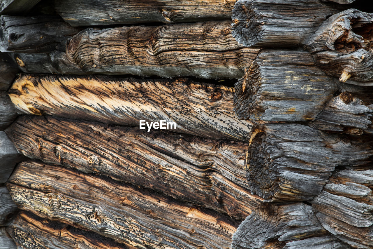 textured, full frame, wood - material, backgrounds, close-up, rough, no people, pattern, day, tree, outdoors, brown, natural pattern, nature, plant bark, tree trunk, timber, wood, trunk, log