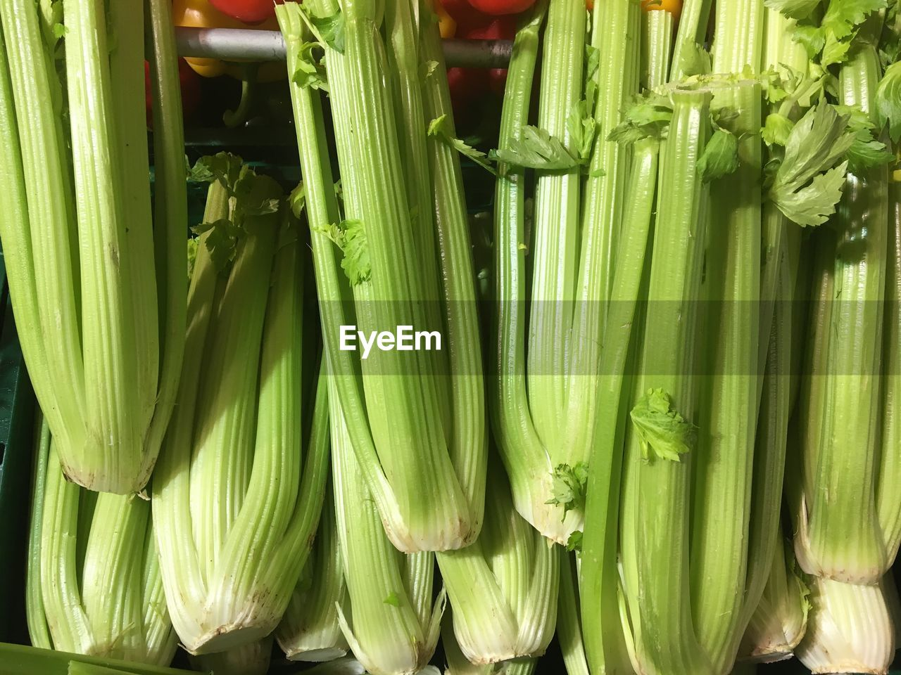 vegetable, food and drink, freshness, healthy eating, green color, food, raw food, asparagus, organic, still life, high angle view, bunch, no people, leek, corn, close-up, day, indoors