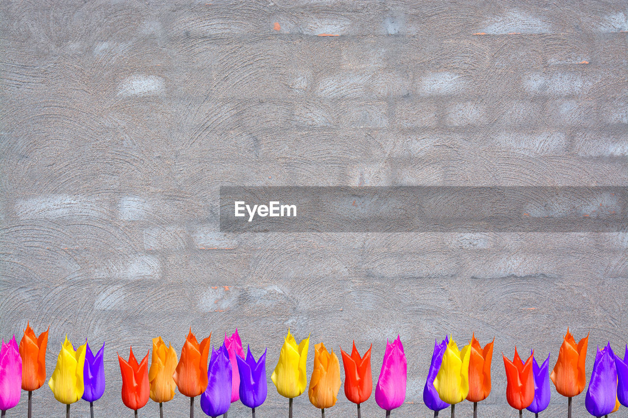 Colorful flowers against brown wall