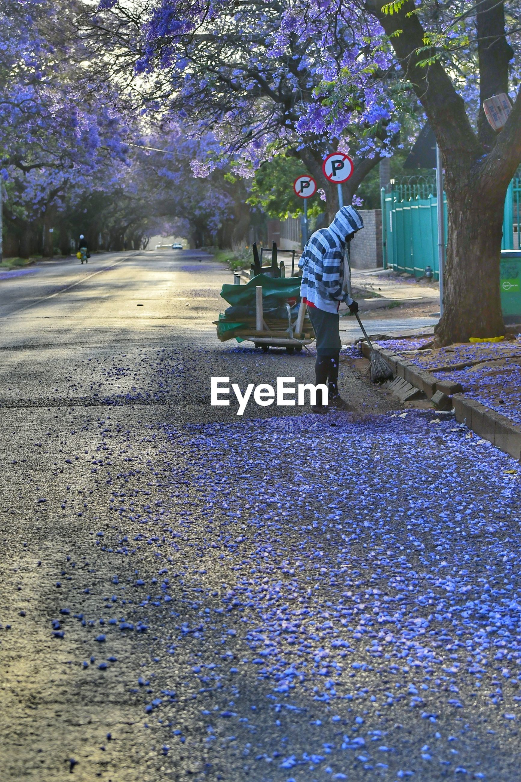FULL LENGTH OF MAN IN PARK AT FLOWER