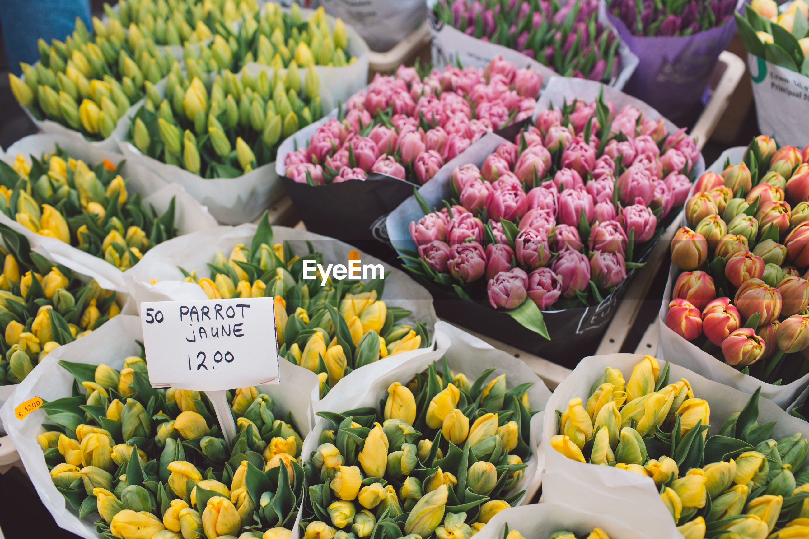 freshness, market, flowering plant, flower, retail, for sale, market stall, price tag, beauty in nature, plant, tulip, abundance, large group of objects, fragility, vulnerability, choice, variation, yellow, retail display, flower head, no people, bouquet, flower market, sale, outdoors, flower arrangement