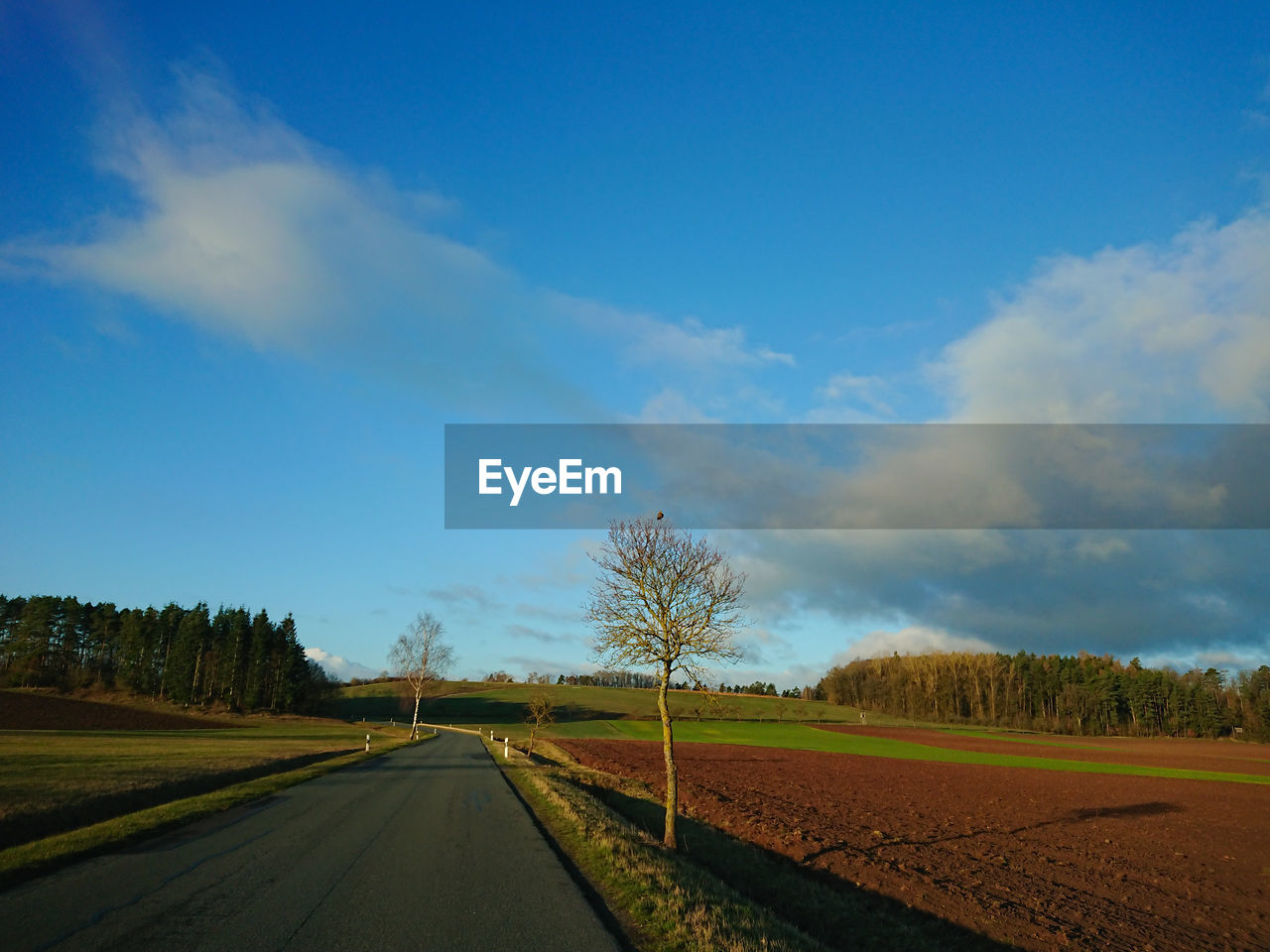 sky, road, cloud - sky, transportation, environment, tree, landscape, direction, land, nature, plant, tranquility, tranquil scene, field, beauty in nature, the way forward, scenics - nature, day, no people, country, diminishing perspective, outdoors