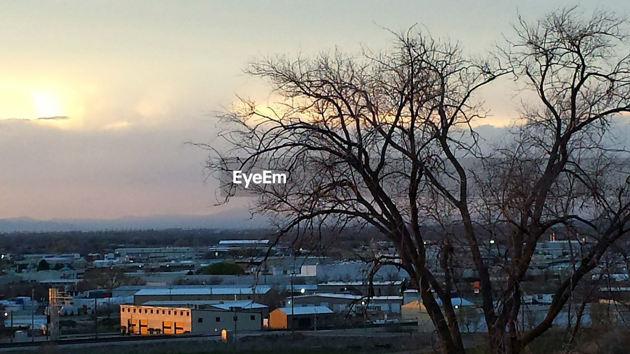 bare tree, tree, architecture, built structure, building exterior, no people, sky, outdoors, nature, sunset, branch, city, day, beauty in nature, cityscape