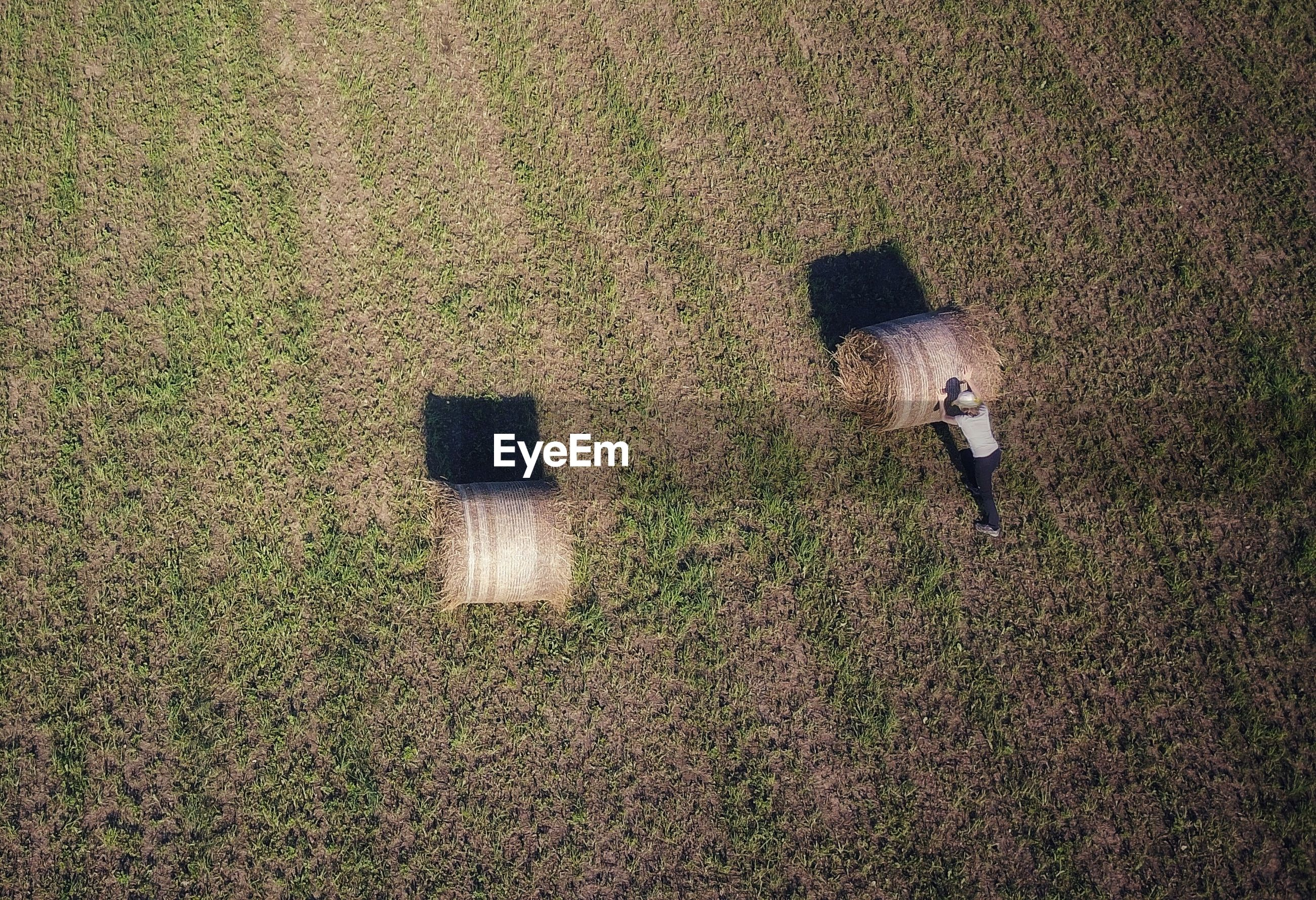 High angle view of man and hay bale on field