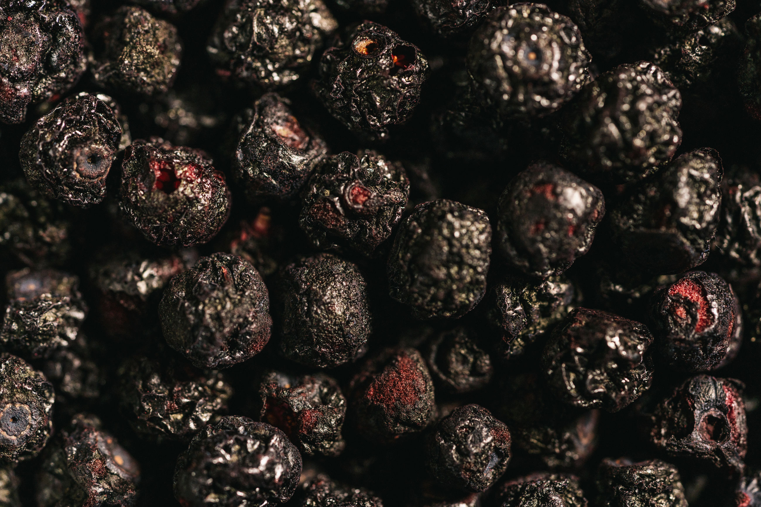Full frame shot of dried chokeberry